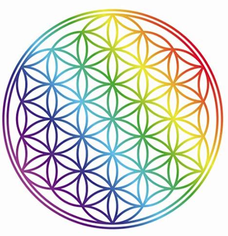 il cerchio colorato composto di tanti cerchi che creano il simbolo sacro il fiore della vita
